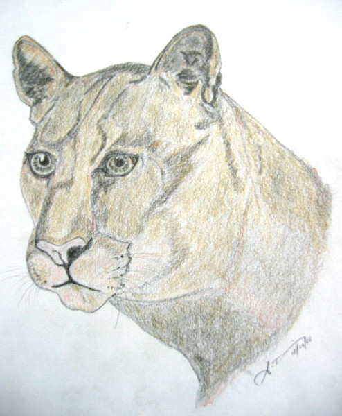 A lioness courage