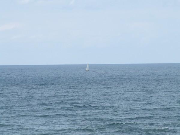 A white sail