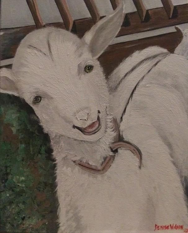 20201207 my goat