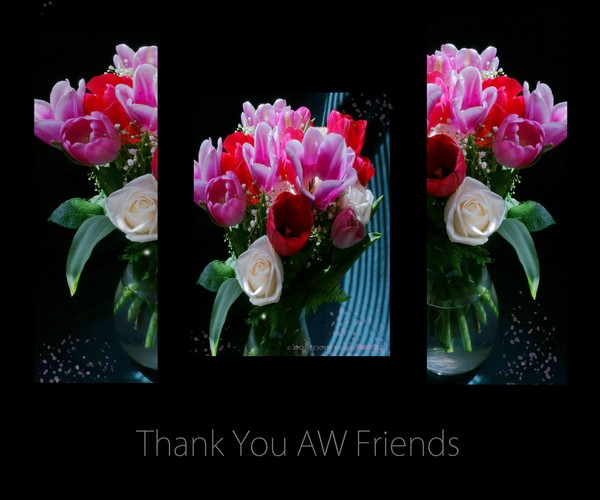 Thank You AW Friends