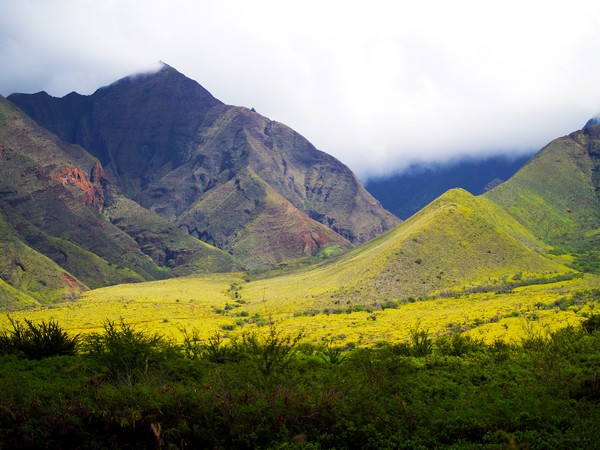 Maui Mountains-fine art print