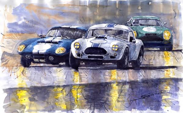 Duel AC Cobra and Shelby Daytona Coupe 1965