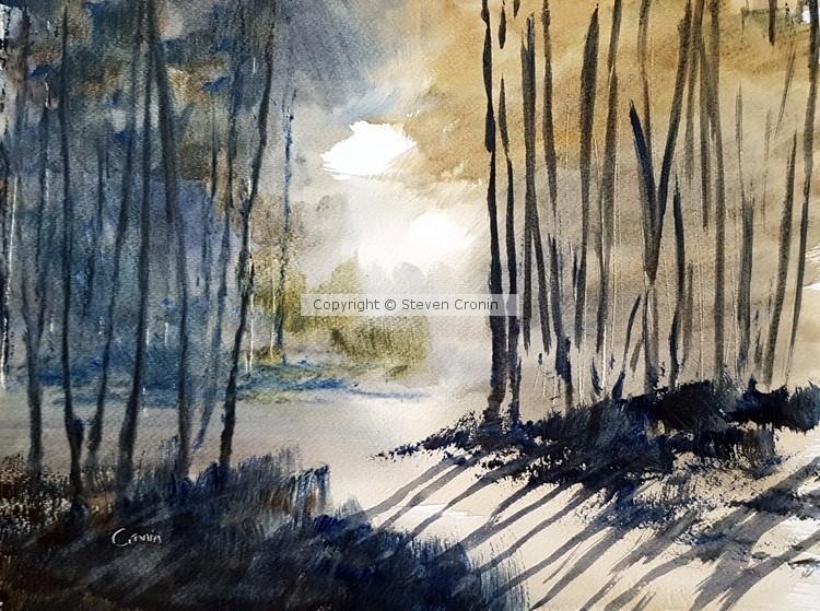 Misty Woods Watercolour Painting by Steven Cronin