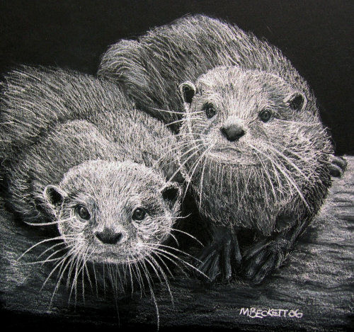 We Otter Be In Pictures