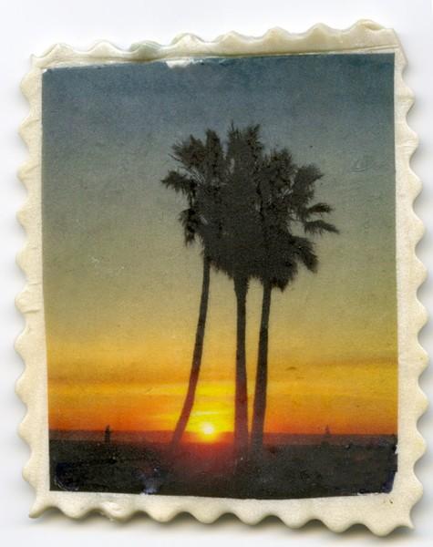 IMAGE TRANSFER Venice Palms