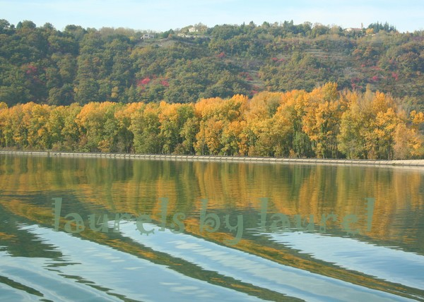 Autumn along the Rhone River