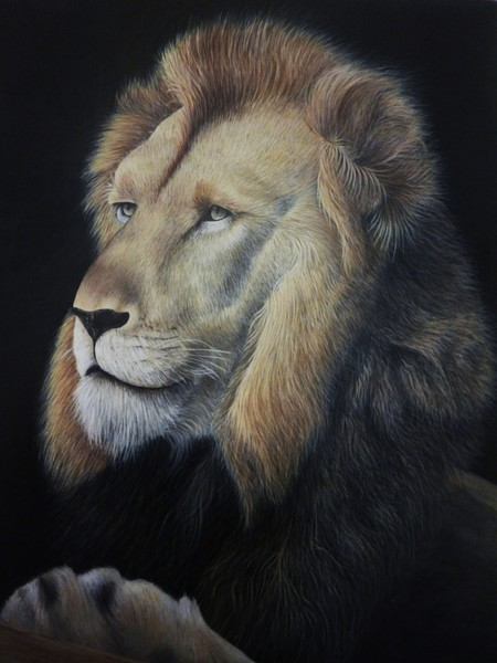 'Leo'