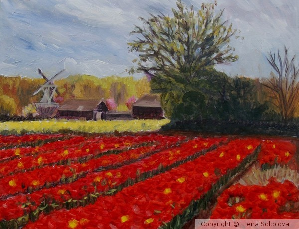 Spring in Holland 2