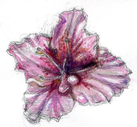 Rhododendron Watercolor