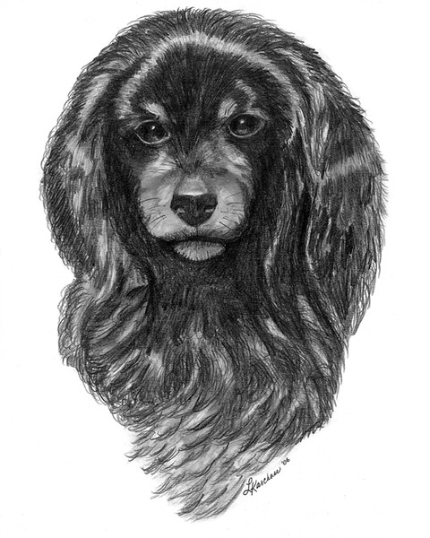 COMMISSIONED - PEE WEE THE DOG