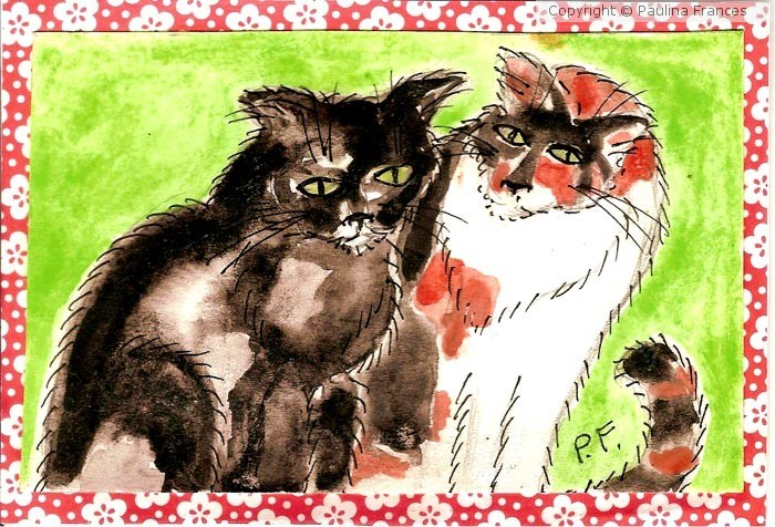 Black and Calico Cats