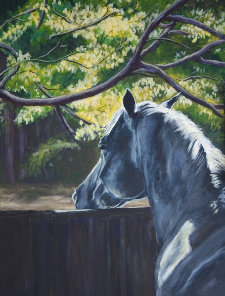 Restful Moment - SOLD
