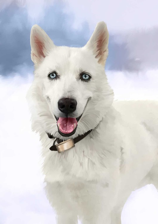 andre perro small