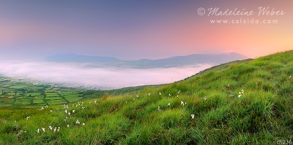 • Final View of Cahersiveen covered in fog