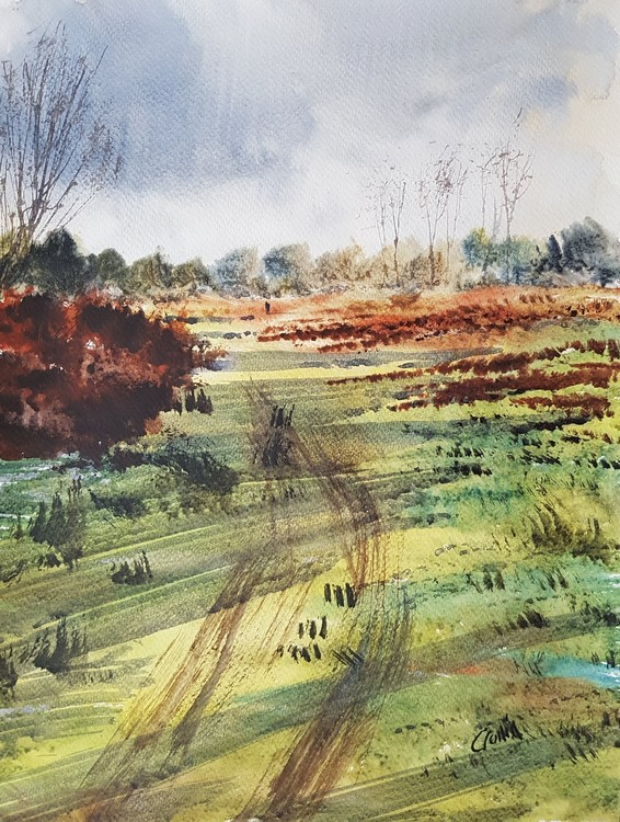 Near Streetly Gate, Sutton Park Watercolour Painting by Steven Cronin