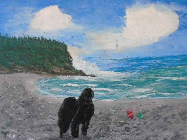Middle Cove Beach Newfoundland