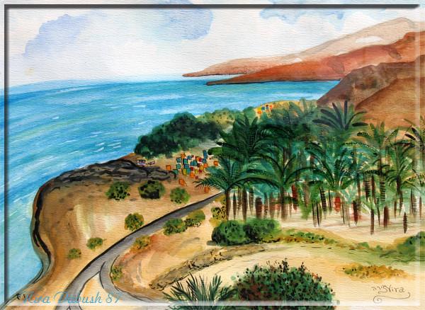 The Dead Sea Salt Lake & Ein Gedi Area
