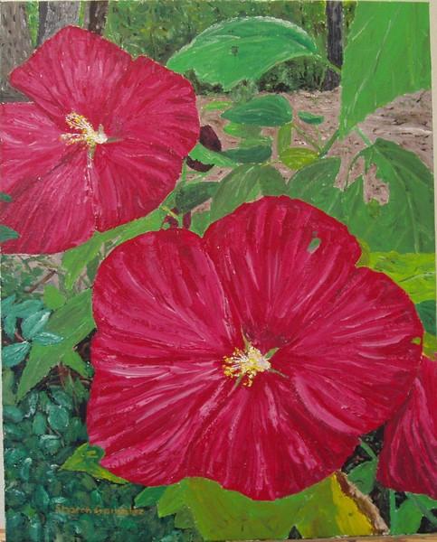 Arkansas Hibiscus #2