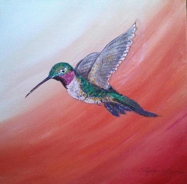 Hovering Hummingbird 2