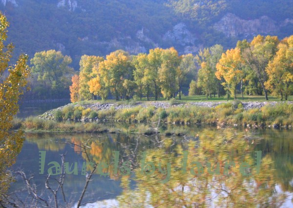 Autumn Reflections along the Rhone River