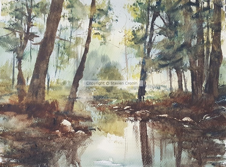 Sutton Park Watercolour Painting