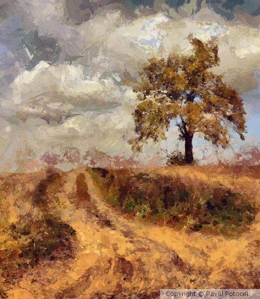 Field path in Autumn