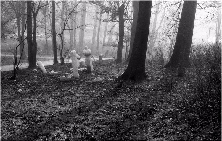 Tombstones in Forest 3S A