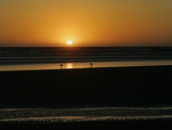 Guarded Sundown