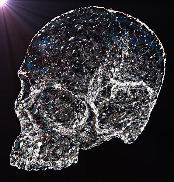 Ice Skullture
