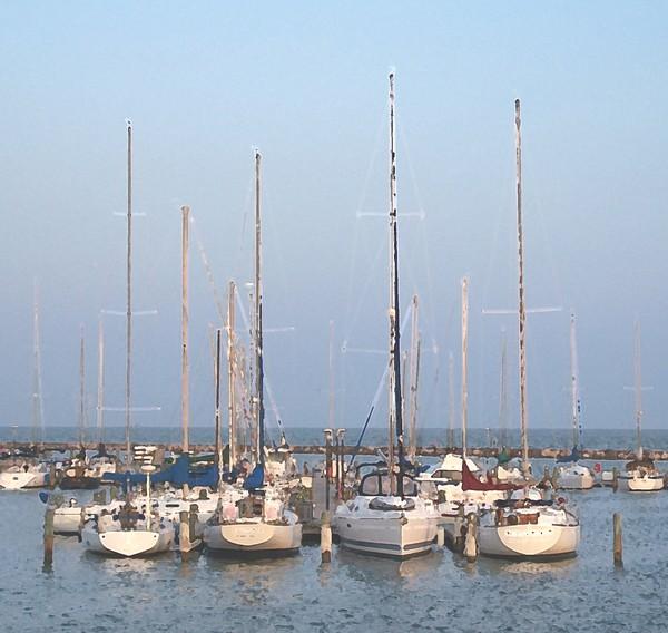 Sailboats in the Corpus Christi marina