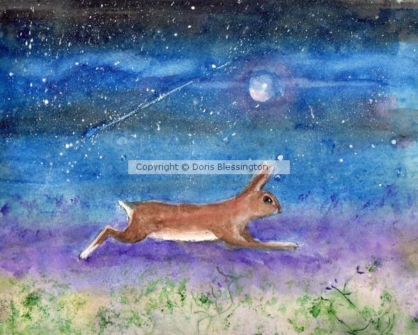 Rabbit in the Galaxy