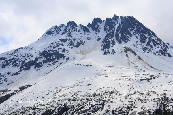 Rugged Alaskan Mountain