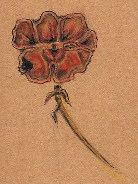 Monkey Flower Watercolor
