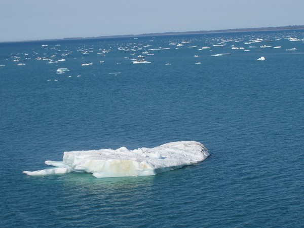 Icy Strait, Alaska #18