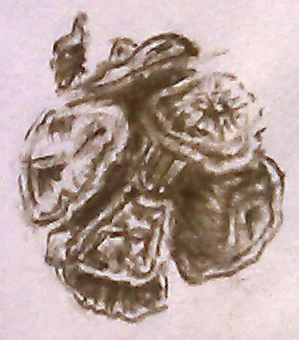 Cypress Cone Sketch