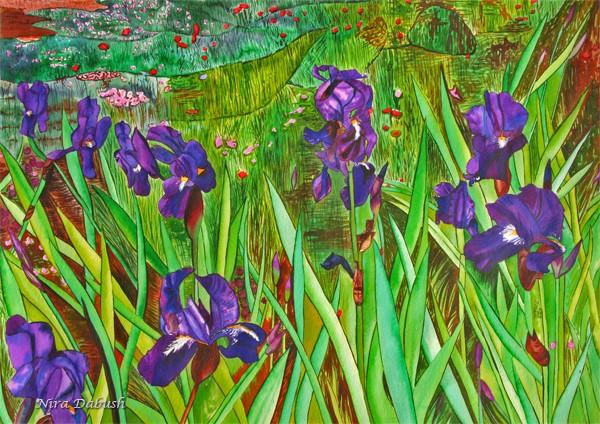 The Deep Purple Irises Field
