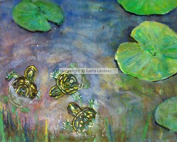 Three Baby Turtles In Rainbow Pond