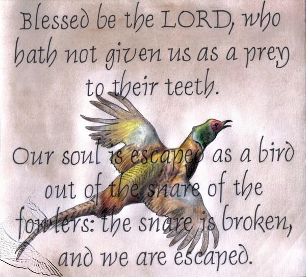 Psalm 124:6-7