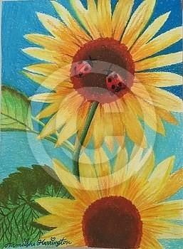 Sunflowers N Ladybugs