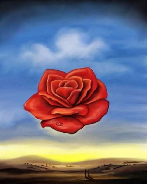 Meditative Rose Reproduction