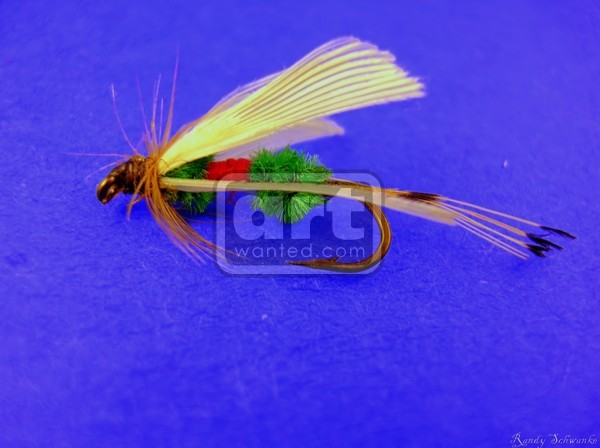 Isolated Trout Fly macro