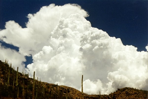 Cumulus Clouds over the Catalinas