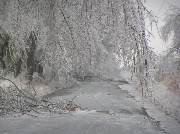 Ice Land?