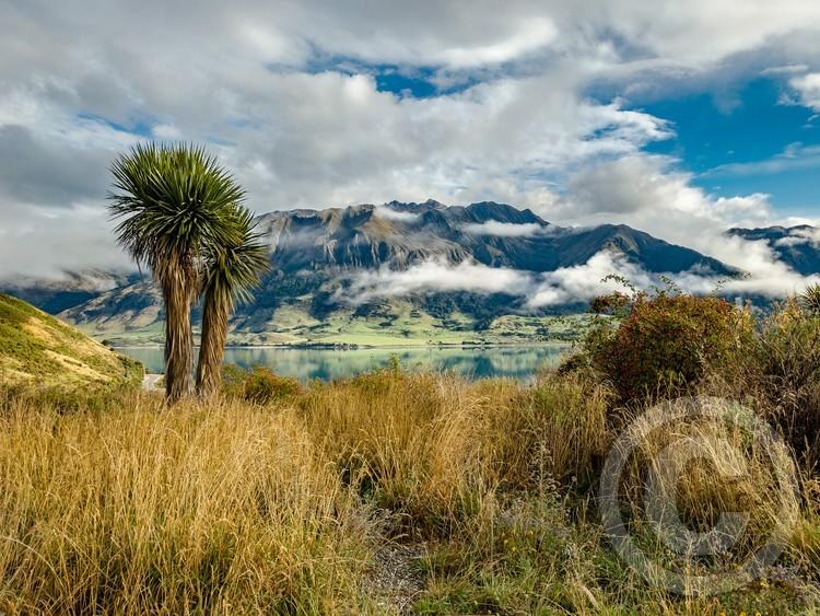 In New Zealand over looking Lake Hawea