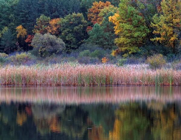 Dufield Pond1