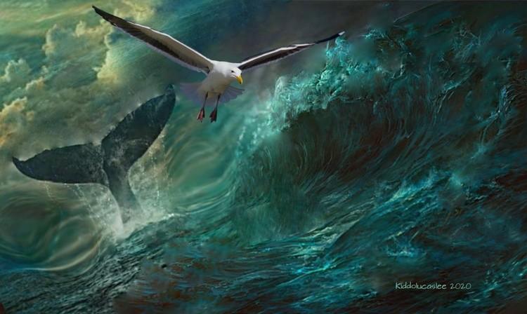 Waves of Moses  High Order * 2020 Kiddolucaslee