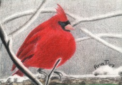 Winter Cardinal - ACEO