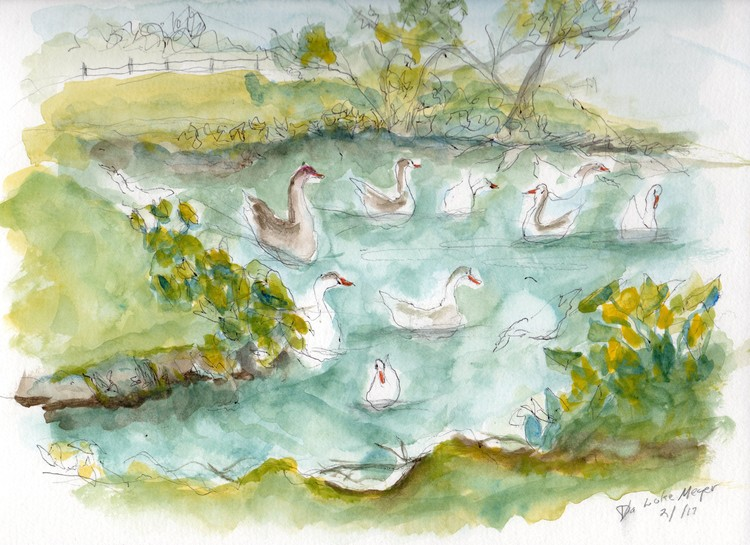 Lake Mayer Geese plein air study
