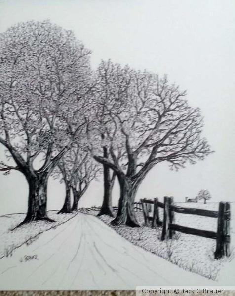 Country Lane Pen & Ink