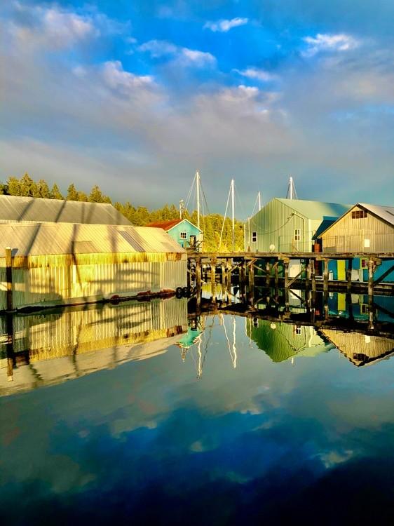 Dock life